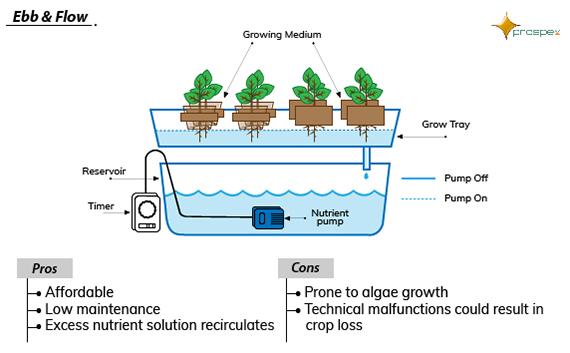 Hydroponics Farming | Drip Irrigation | Prospex