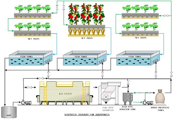 Prospex  U2013 Irrigation  U2013 Fertigation Skid